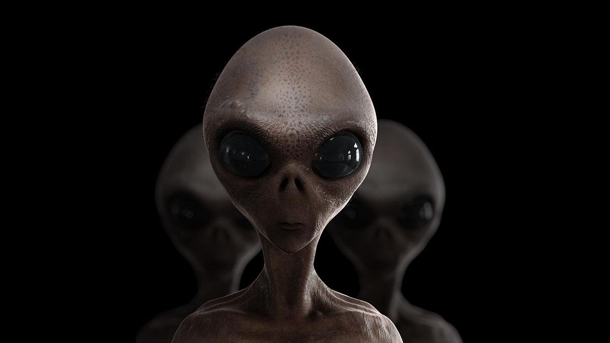 alien composite mugshot