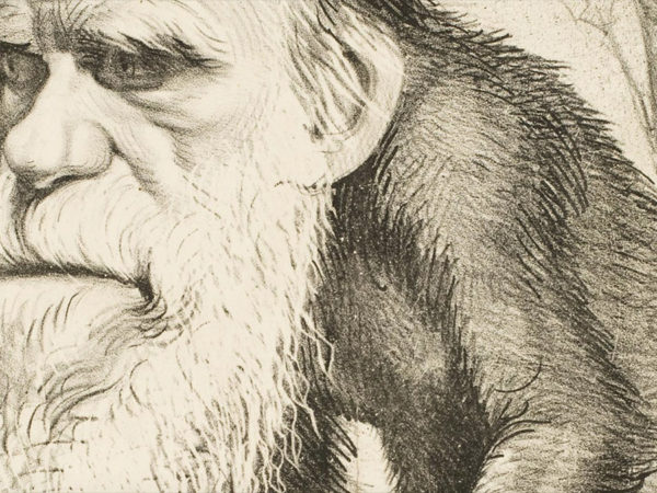 the creationist quest to slime darwin