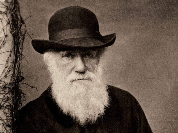 why evolution didn't really need darwin