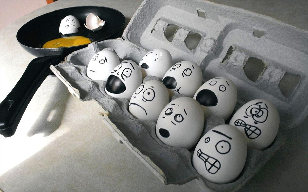 eggs in panic