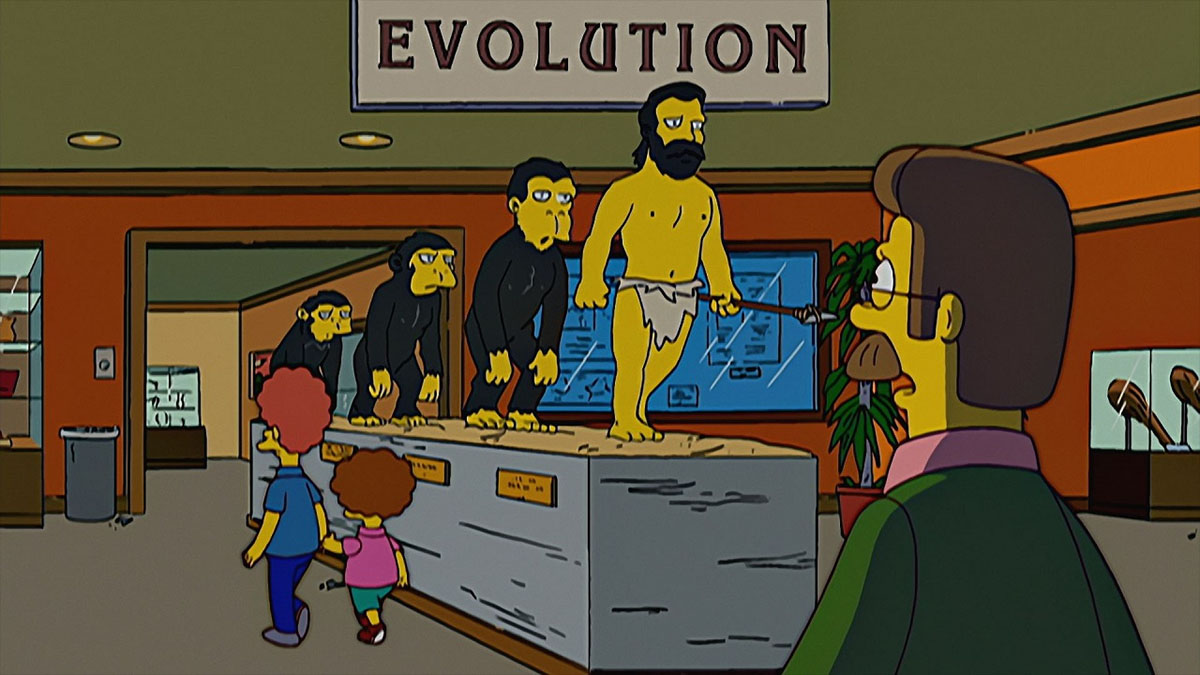 flanders evolution