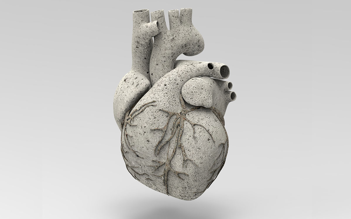 heart scaffolding