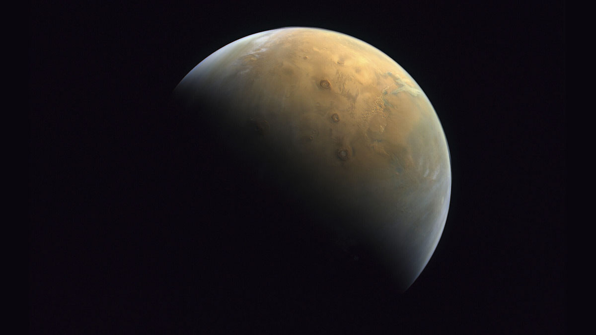 are we really all martians?