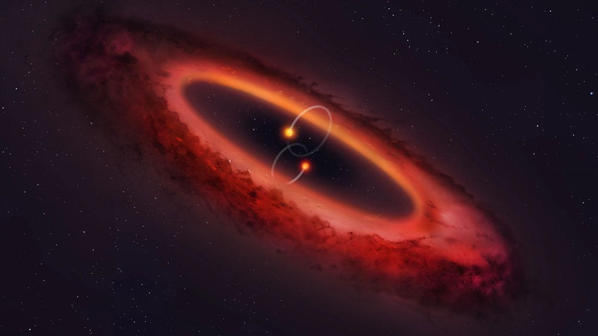polar protoplanetary disk diagram