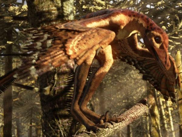 predatory dinosaurs, now with venom?
