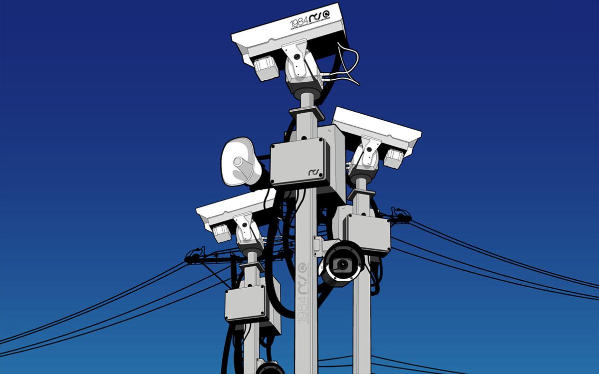 surveillance camera array