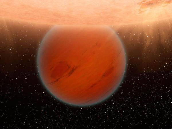meet the backwards planet